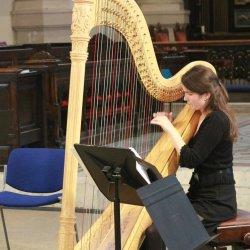 Vrouw speelt op een concertharp