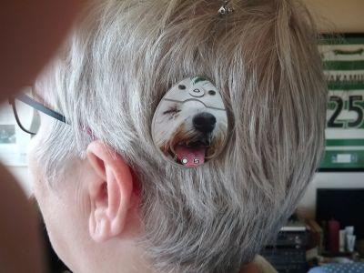 CI met afbeelding van een hond